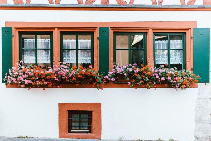 Choisir les bonnes plantes et fleurir son balcon en ville, c'est simple !