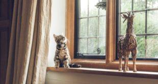 les rebords de fenêtres sont un atout décoration