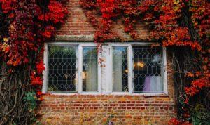 Comment lutter contre l'humidité dans la maison en automne ?