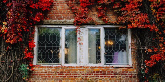 Comment lutter contre l humidit dans la maison en automne - Plante contre l humidite dans la maison ...